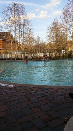 Best Western Premier Saratoga Resort Villas: estaba desayunando en la pileta mientras tome esta foto .
