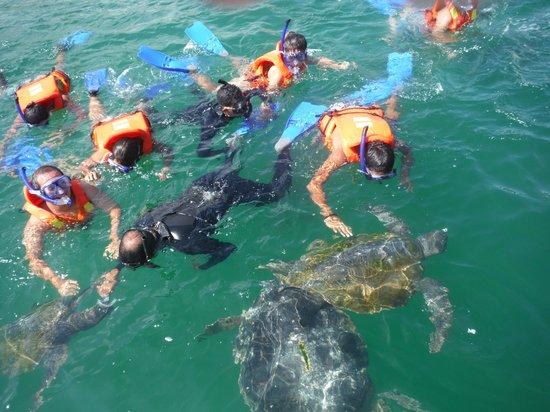 Piura, Peru: todo el grupo nadando