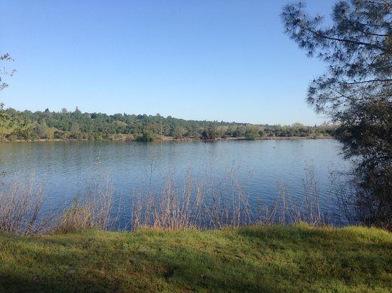 shore of Lake Natoma & regatta
