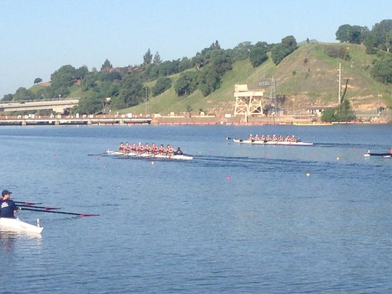 Lake Natoma: Jr. rowing regatta on South shore