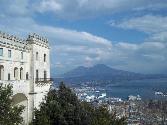 Certosa e Museo di San Martino Napoli: Panorama....dal giardino