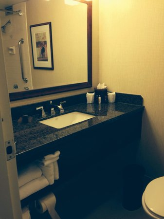 Los Angeles Airport Marriott : Bathroom