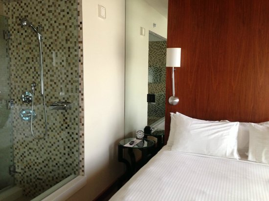 Andaz San Diego: Room with shower