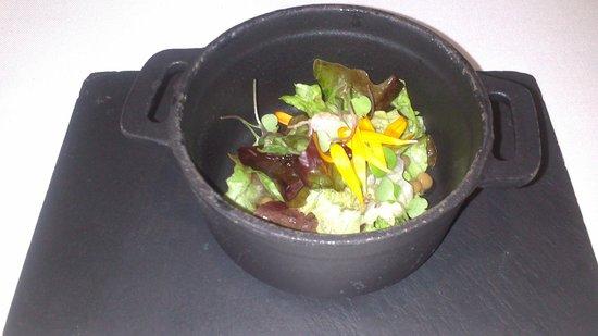 Novodabo: ensalada