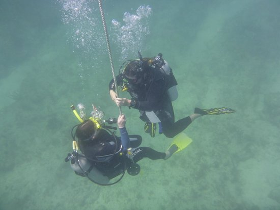 Keys Diver Snorkel & Scuba: Allison and an open water young apprentice.