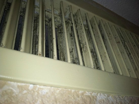 Viscount Suite Hotel: Filthy, moldy air vents