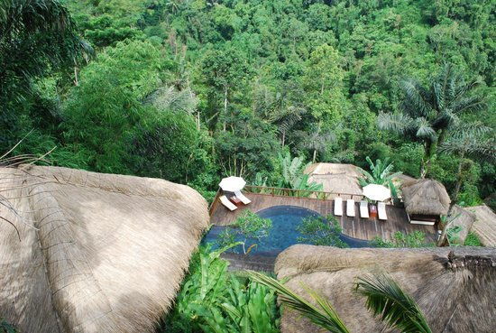 Nandini Bali Jungle Resort & Spa: View of countryside from deluxe room
