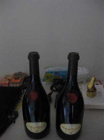Sentido Ixian Grand: Wine I recomend! (STRONGLY!)
