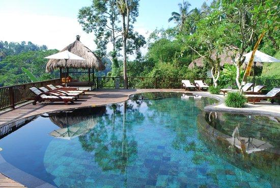 Nandini Bali Jungle Resort & Spa: Nandini pool