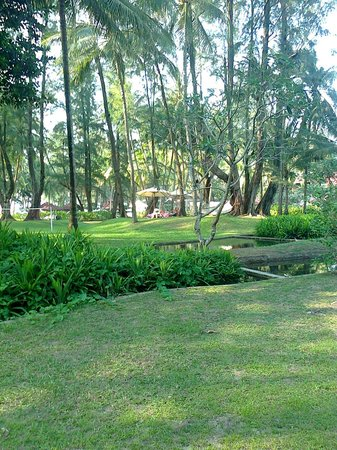 Dusit Thani Laguna Phuket : garden grounds from in front of south wing