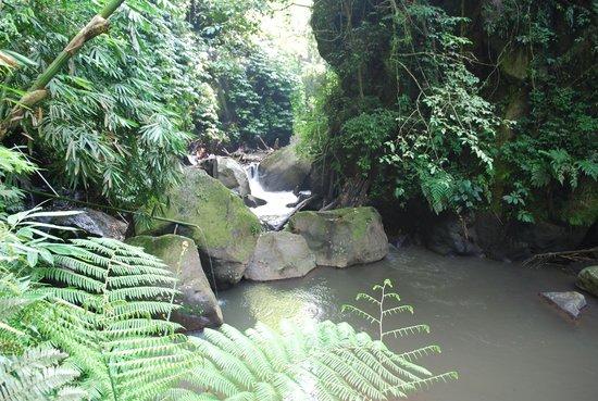 Nandini Bali Jungle Resort & Spa: Jungle stream site for Spa on the River