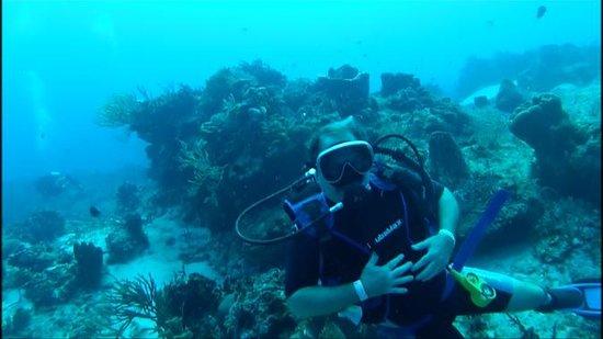 Pro Dive Mexico: Cozumel Drift Dive - OUTSTANDING!!