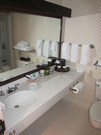 Crowne Plaza Hotel Nashua : 401 toilet table