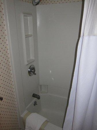 Crowne Plaza Hotel Nashua: 401 bathroom shower