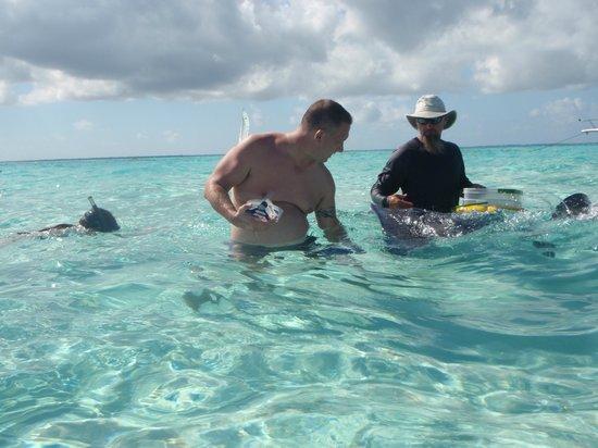 Stingray Sailing: David Luster feeding the stingray