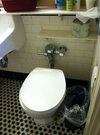 Mountain Lake Lodge : older toilet, but was fine