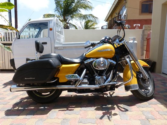 Little Paradise Aruba Vacation Apartments : harley de Frank