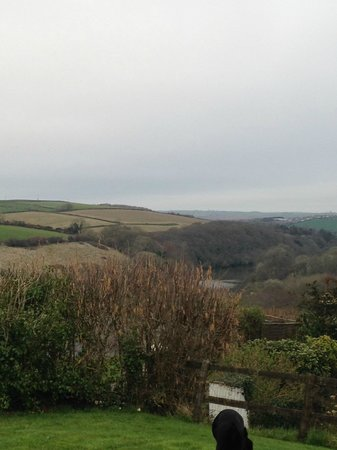 Robin Hill Farm Cottages: Incredible views