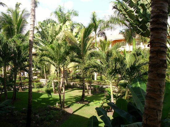 Luxury Bahia Principe Ambar Blue Don Pablo Collection: grounds