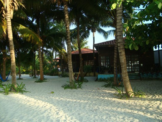 Petit Lafitte: view of bungalows from beach