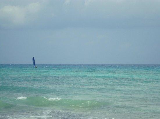 Petit Lafitte: beach