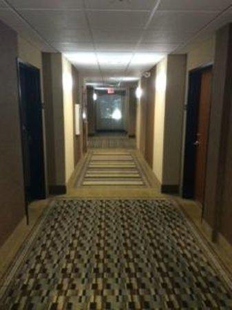 Comfort Inn & Suites : Corridor