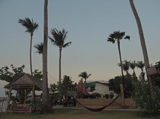 Samui Pier Resort: Jardin hotel