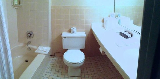Alpine Valley Resort : Small but clean bathroom