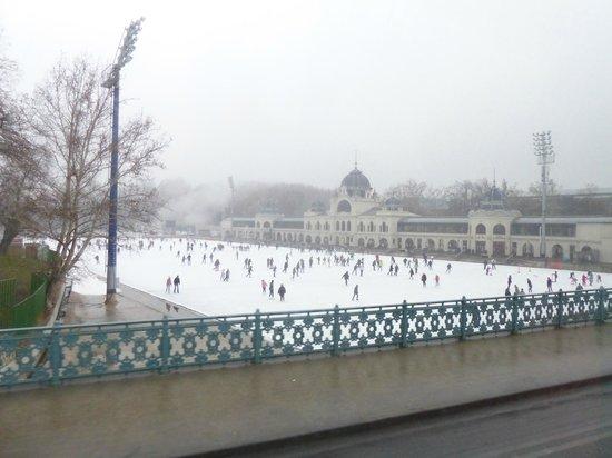 Heldenplatz: La pista de hielo del parque de la ciudad