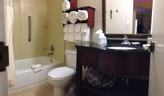 Hampton Inn & Suites Birmingham Downtown - The Tutwiler: clean bathroom is always a PLUS!