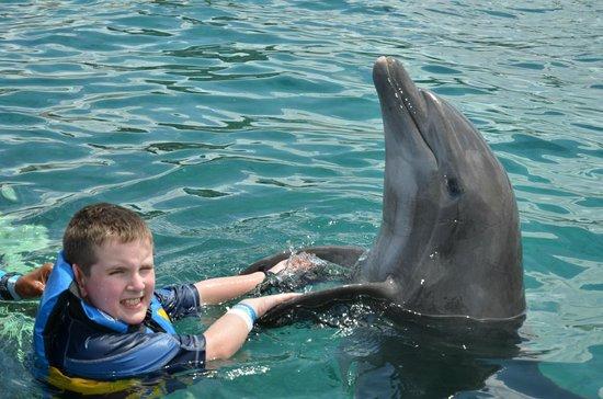 "Chankanaab Beach Adventure Park: Shaking hands with ""Chuck"" the dolphin"