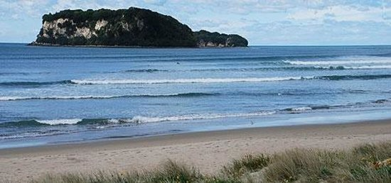 Sandy Rose Bed & Breakfast : Whangamata Beach - a short stroll to swim, walk, surf or just sit