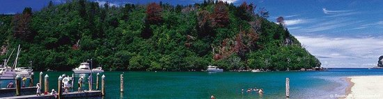Sandy Rose Bed & Breakfast : Whangamata Harbour - a short stroll to fishing and boating