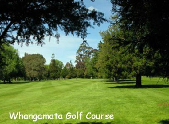 Sandy Rose Bed & Breakfast : Whangamata Golf - enjoy a full 18 holes or the smaller 9 hole course
