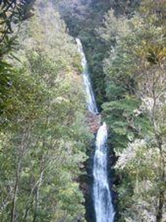 Sandy Rose Bed & Breakfast: Wentworth Valley Falls - a stunning hour's walk only 5km from town