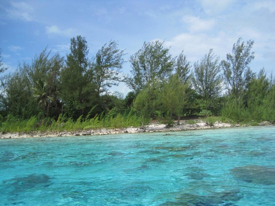 Arrecife del descubrimiento: Lagoon - shallow water near at motu