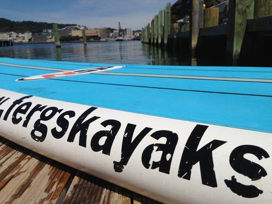 Fergs Kayaks Wellington