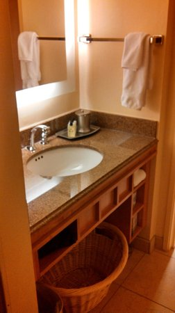 Coast Anabelle Hotel: Nice sink and counter area