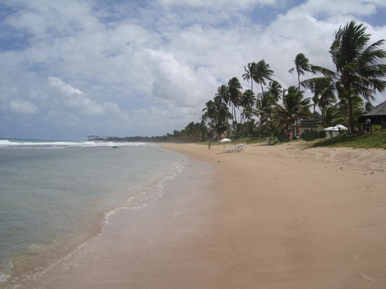 Nannai Resort & Spa: Beach