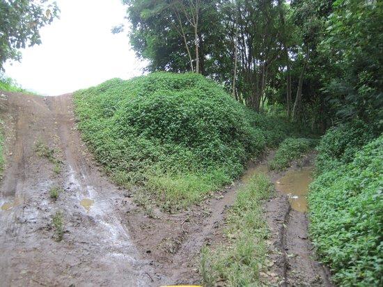 Tupuna Mountain Safari Bora Bora: Which way? A muddy road upwards!