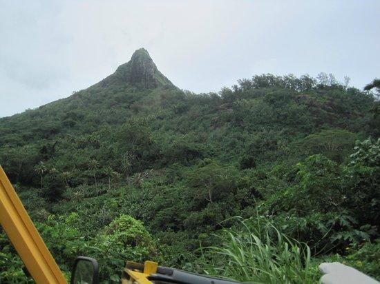 Tupuna Mountain Safari Bora Bora: Lovely scenic view