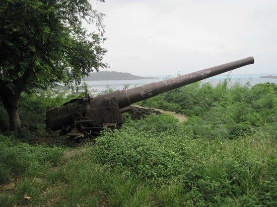 Tupuna Mountain Safari Bora Bora: Old US Navy cannon from WW2