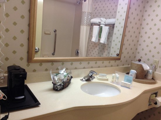 Hampton Inn NY - JFK: Bathroom