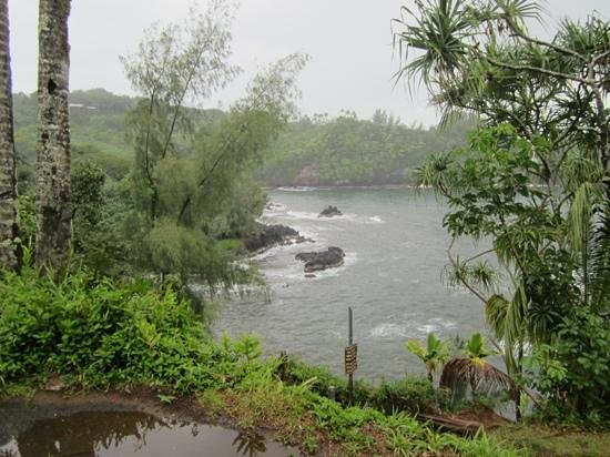 Pepeekeo Scenic Drive : lovely coastal view even in the rain