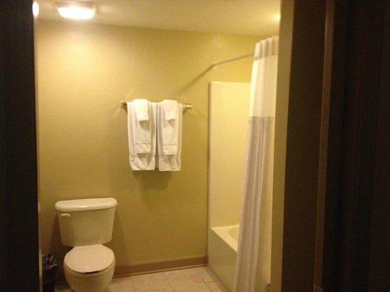 Wyndham Nashville: Lockoff bathroom