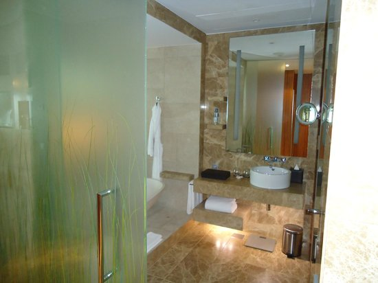 Hyatt Capital Gate: Best ever bathroom