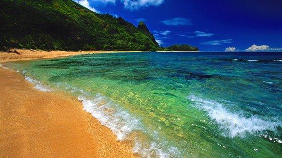 Hotel La Palapa Eco Lodge Resort: Pacific Coast beaches.