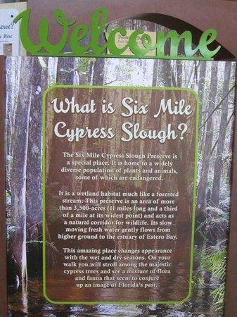 Six Mile Cypress Slough Preserve: Description