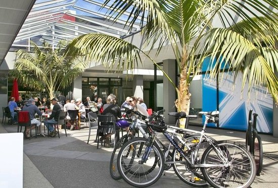 Eruption Cafe: Our Courtyard