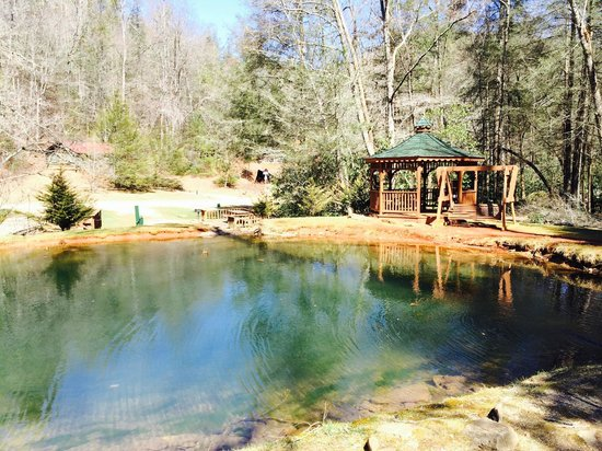 Enota Mountain Retreat : The fish pond right in front of the lodge.